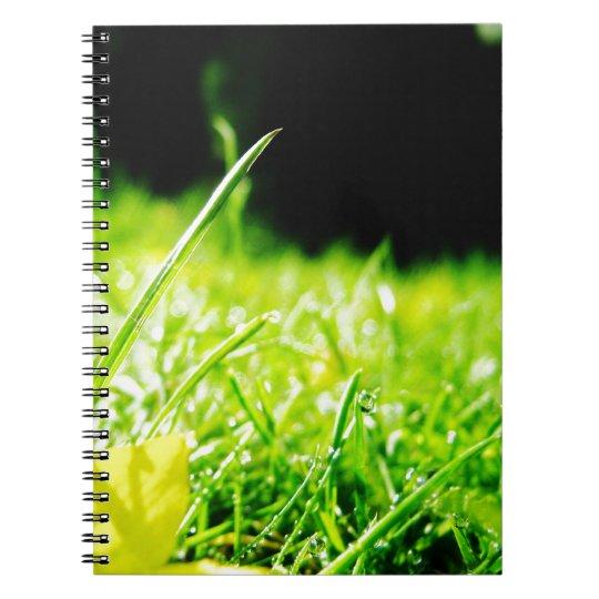 peep notebooks