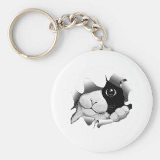 peeping cat basic round button key ring