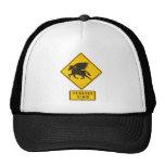 Pegasus XING Hats