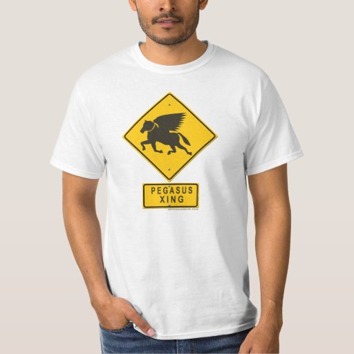 Pegasus XING Tshirts