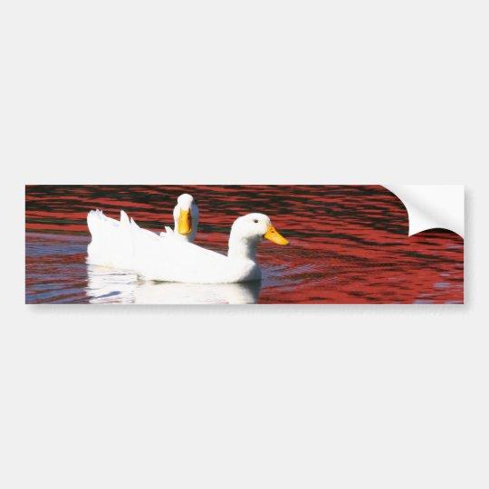 Pekin Ducks Bumper Sticker