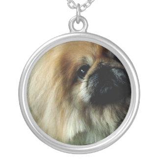 pekingese-15.jpg round pendant necklace