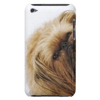 Pekingese dog, close up barely there iPod case