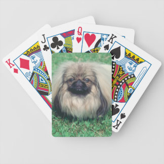 Pekingese Dog Playing Cards