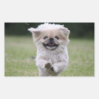 Pekingese dog stickers, cute photo, gift rectangular sticker