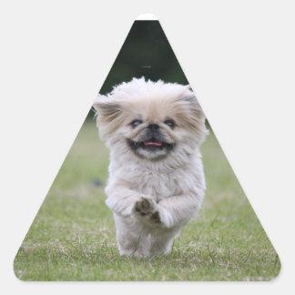Pekingese dog stickers, cute photo, gift triangle sticker