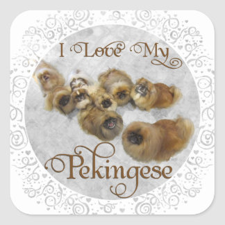 Pekingese Love Square Sticker