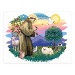 Pekingese (white) postcard