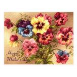 Pelargonium Mother's Day Card Postcard
