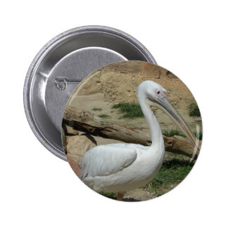 Pelican 6 Cm Round Badge