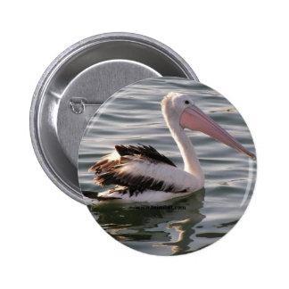 pelican pinback button