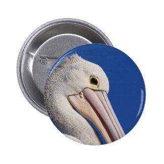 Pelican Buttons