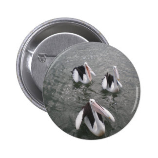 Pelican Pins