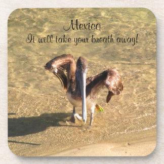 Pelican Bathtime; Mexico Souvenir Coasters