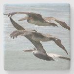 Pelican Bird Wildlife Beach Animal Stone Coaster