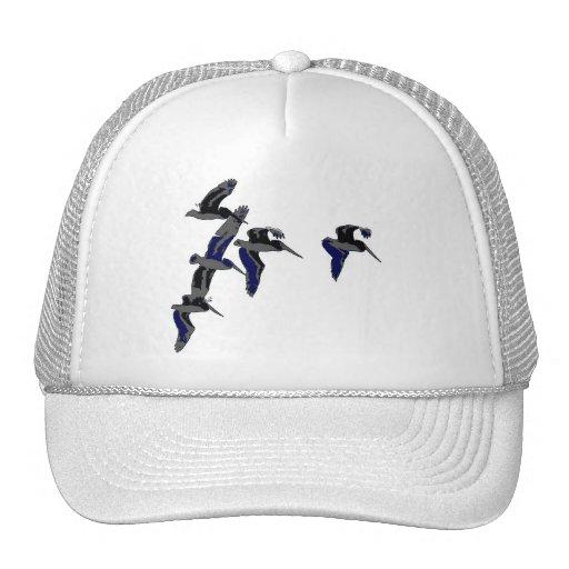Pelican Birds Wildlife Animals Cap