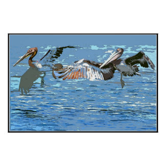 Pelican Birds Wildlife Animals Poster