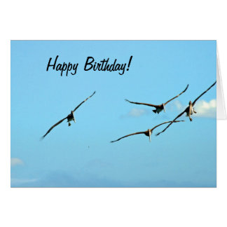Pelican Birthday 1 Card