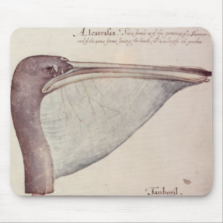 Pelican, c.1590 mouse pad
