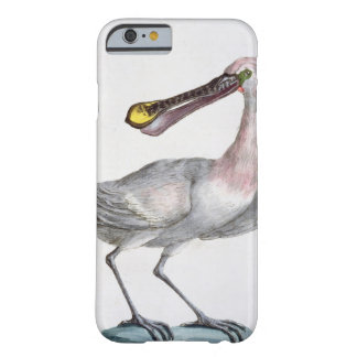 Pelican, c.1767-76 (hand coloured engraving) barely there iPhone 6 case
