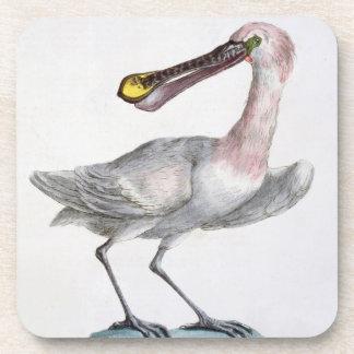 Pelican, c.1767-76 (hand coloured engraving) beverage coaster