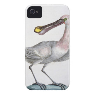 Pelican, c.1767-76 (hand coloured engraving) Case-Mate iPhone 4 cases