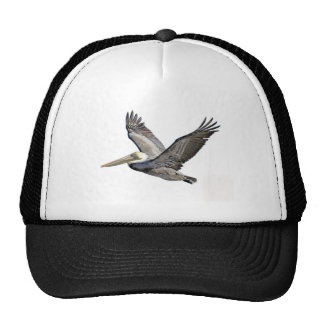 Pelican Clear Hat