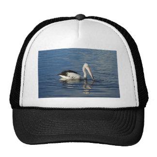 Pelican Hats