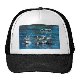 Pelican Trucker Hats