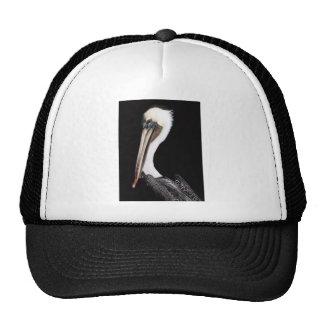 Pelican Mesh Hats