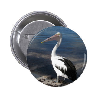 Pelican 'Hello there' Buttons