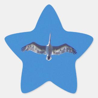 Pelican In Flight Star Sticker