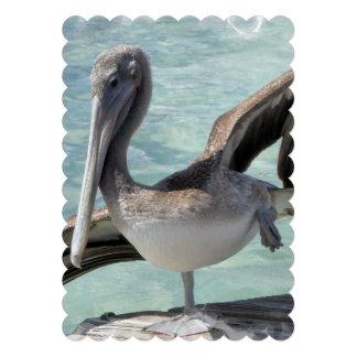 Pelican Custom Announcement