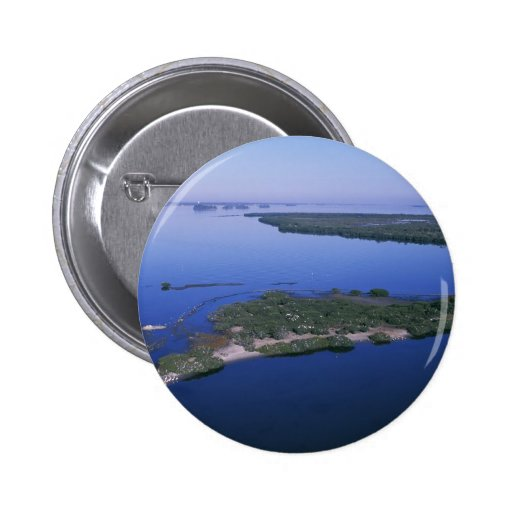 Pelican Island Pin