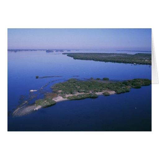 Pelican Island Greeting Card