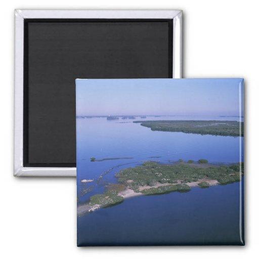Pelican Island Magnets