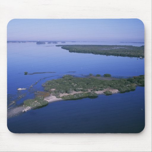 Pelican Island Mouse Pads