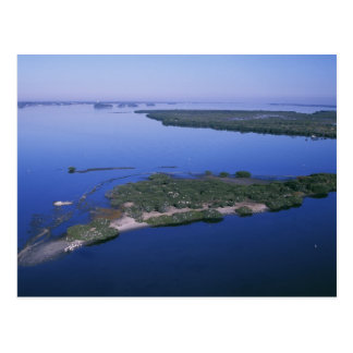 Pelican Island Postcards