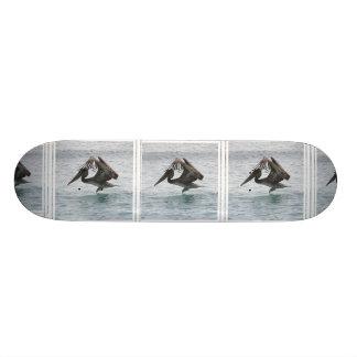 Pelican Landing Skateboard