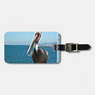 pelican travel bag tag