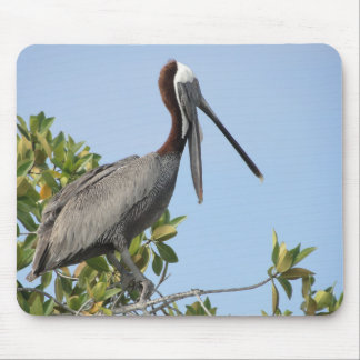 Pelican on the tree mouse pad