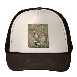 Pelican Pair - hat
