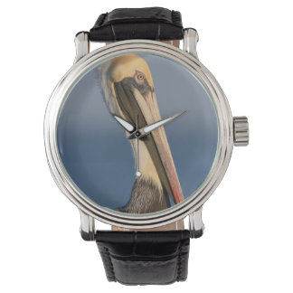 Pelican Profile Watch