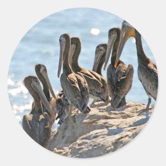 Pelican Rock Round Sticker