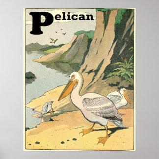 Pelican Story Book Alphabet Poster