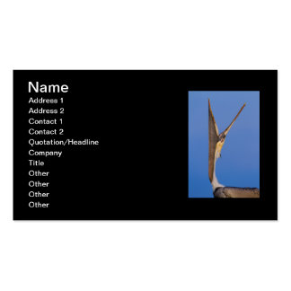 Pelican Stretch Pack Of Standard Business Cards