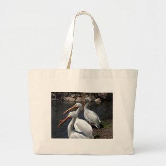 pelicans,3 bags