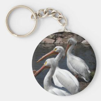 pelicans,3 basic round button key ring