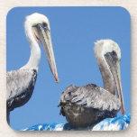 Pelicans Art Cork Coaster