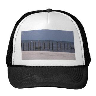 PELICANS! TRUCKER HATS